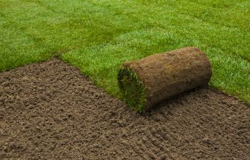 Sod Being Rolled Out in Cumming GA,